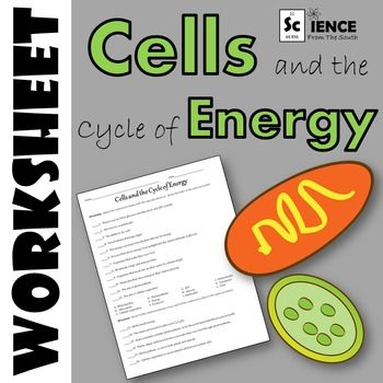 30+ Fantastic cell energy worksheet Awesome