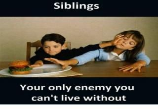 37 Sibling Memes That Prove They Can Be So Annoying Siblings Funny Quotes Brother Quotes Funny Sister Quotes Funny