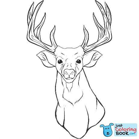 Free Download Printable Head Of Deer Coloring Pages Deer