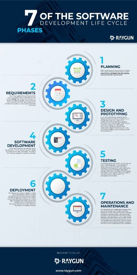 7 Phases Of Software Development Life Cycle Infographic