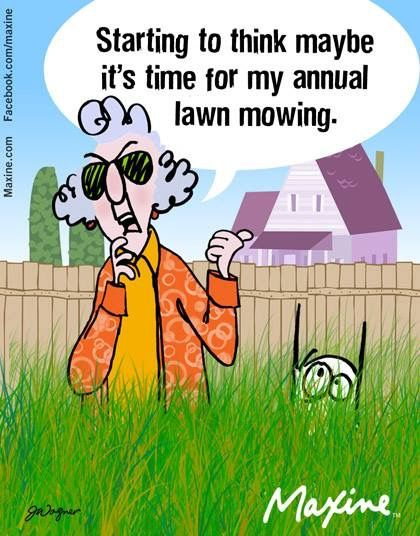 Time To Mow The Lawn Maxine Humor Funny