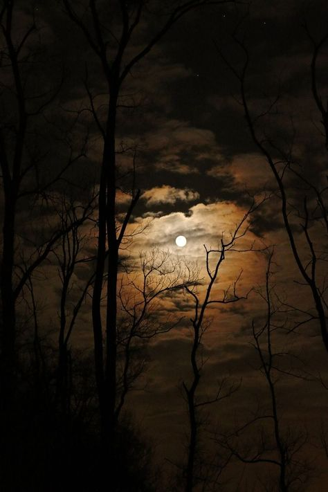 learn a new way of thinking about night photography #nightphotography #fullmoon