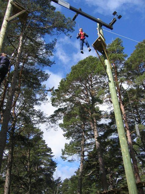 35 Best Attractions At Landmark Forest Adventure Park Ideas Forest Adventure Adventure Park Pine Forest