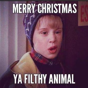 Funny Christmasmemes Christmas Meme Funnyphotos Lol Christmasfunny Christmas Fi Christmas Jokes Christmas Memes Merry Christmas Ya Filthy Animal