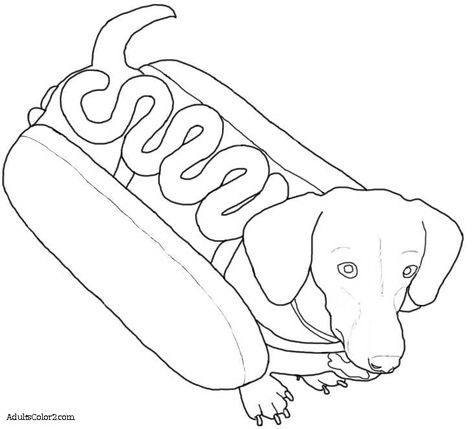 Image Result For Weenie Dog Coloring Page Dog Coloring Page