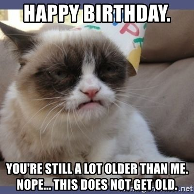 Pin By Diane Garland On Exercise Food Weight Age In 2021 Cat Birthday Memes Grumpy Cat Humor Grumpy Cat
