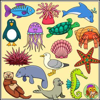 Sea Animal Clip Art Color And B W Ocean Animals Ocean Animals Sea Animals Clip Art