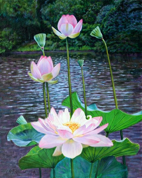 Lotus Painting - Lotus by John Lautermilch