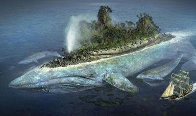 Mi Bosque Mágico Isla De San Borondón La Isla Fantasma San Borondon Monstruos Agua Quieta