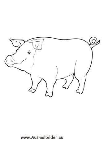 Ausmalbild Dickes Schwein Zum Kostenlosen Ausdrucken Und Ausmalen Fur Kinder Ausmalbilder Malvorlagen Ausmalen Sc Ausmalbilder Tiere Ausmalen Tiere