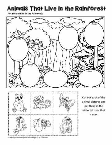 Yuva Hayvanyuvasi Okuloncesi Etkinlikkagidi Etkinlik Nest Animalnest Kindergarten Bul In 2021 Rainforest Activities Animal Worksheets Jungle Animals Preschool Rainforest worksheets for kindergarten