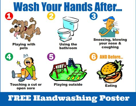 Free Handwashing Poster From Nebraska Extension How To