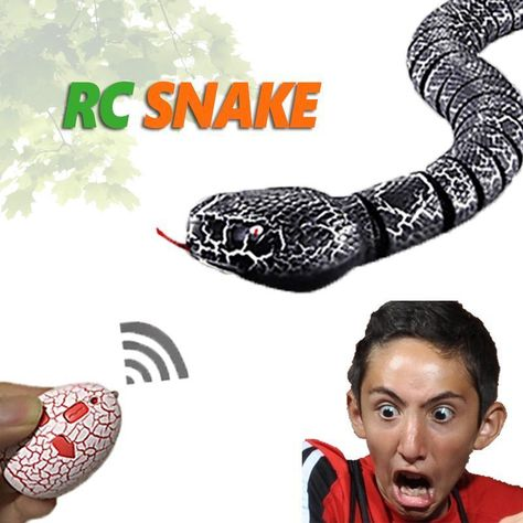 RC Snake Toy Remote Control Snake Toy With Interesting Egg Radio Contr