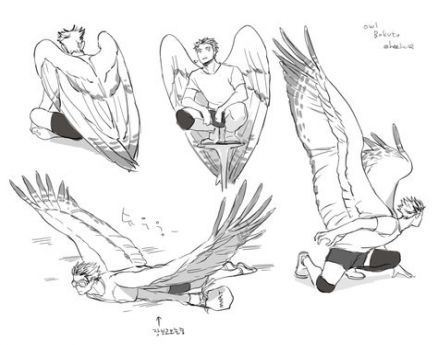24 Ideas Drawing Poses Reference Flying For 2019 Wings Drawing Wings Art Drawings