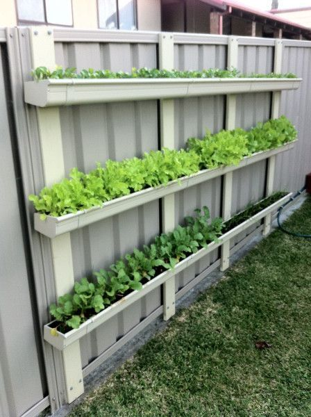 Gutter Gardens – Sustainably Sustainably DIY Garden Yard Art When growing your own lawn yard art, re Gutter Garden, Veg Garden, Vegetable Garden Design, Verticle Garden, Vertical Vegetable Gardens, Veggie Gardens, Garden Types, Vegetable Gardening, Vertical Planter