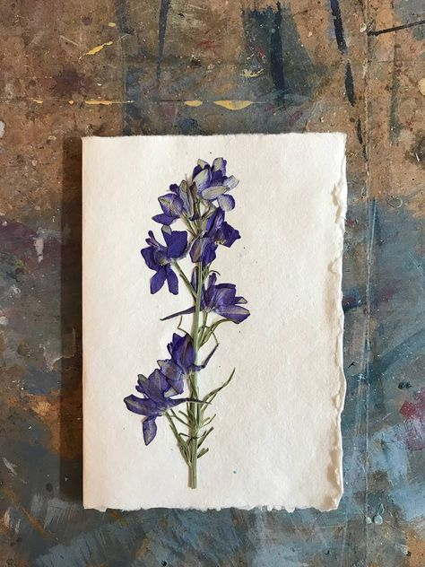 An artist's guide to pressing flowers to frame