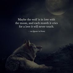 Maybe the wolf is in love with the moon, and each month it cries for a love it will never touch.