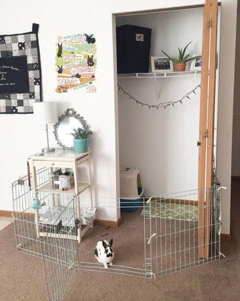 Indoor Rabbit House, Rabbit Hutch Indoor, House Rabbit, Indoor Rabbit Cages, Diy Bunny Cage, Bunny Cages, Rabbit Cage Diy, Mini Rex Rabbit, Pet Rabbit