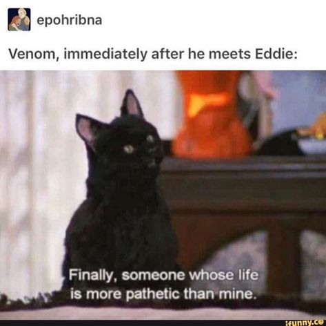 E epohribna Venom, immediately after he meets Eddie: ,a; Finally, someone whose life is more pathetic than mine. v - iFunny :) Funny Marvel Memes, Marvel Jokes, Dc Memes, Avengers Memes, Funny Memes, Marvel Comics, Venom Comics, Marvel Venom, Marvel Avengers