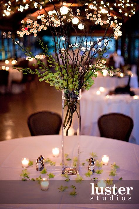 Cheaper centerpiece idea simple and earthy love the lights in cheaper centerpiece idea simple and earthy love the lights in background wedding ideas pinterest centerpieces cheap centerpiece ideas and wedding junglespirit Image collections