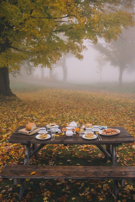 Gal Meets Glam // Foggy morning in Vermont Vermont, Autumn Morning, Autumn Cozy, Foggy Morning, Autumn Fall, Anna Laura, Autumn Scenery, Autumn Aesthetic, All Nature