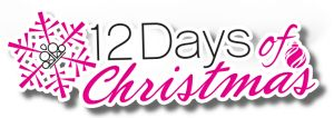 Are you ready for the 12 DAYS OF PAPARAZZI ACCESSORIES CHRISTMAS?! For 12 days only, Paparazzi is giving incredible offers! Check it out.