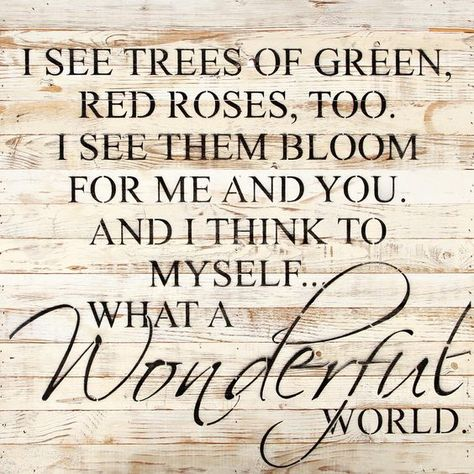 Sign What A Wonderful Life Red Roses Wonders Of The World