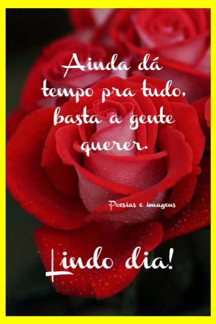 Pin De Saturnina Graciela Em Amor Rosas Vermelhas Abraco De Bom