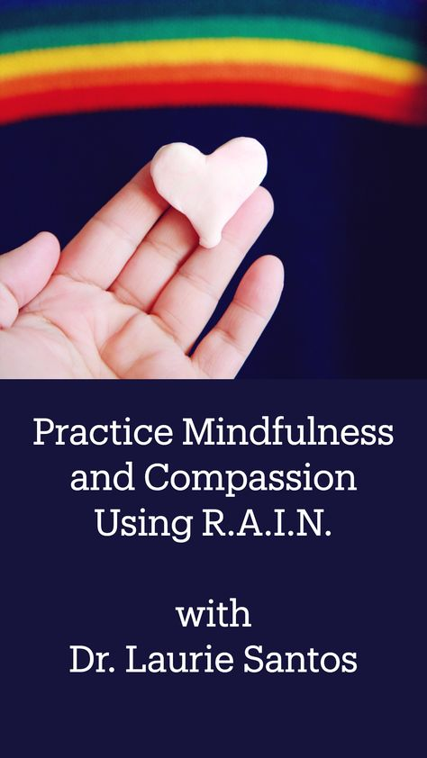 Practice Mindfulness and Compassion Using R.A.I.N. with Dr. Laurie Santos