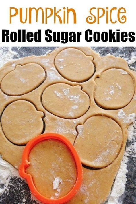 Cookies Dough, Cookie Dough Recipes, Sugar Cookie Dough, Roll Cookies, Cookies Et Biscuits, Pumpkin Spice Sugar Cookies Recipe, Roll Out Cookie Dough Recipe, Sugar Cookie Recipes, Pumpkin Sugar Cookies Decorated
