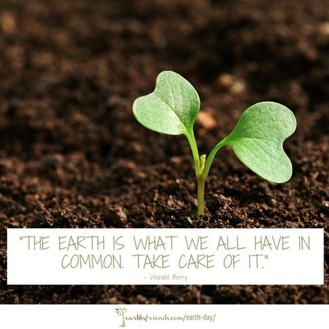What Is Earth Day History Evolution Earth S Friends Composteren Onkruid Bestrijden Tuin