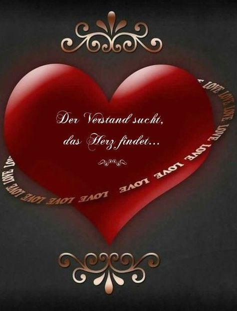 The mind seeks, the heart finds .... - #finds #heart #seeks - #Cathy'sRomanticWallpapers