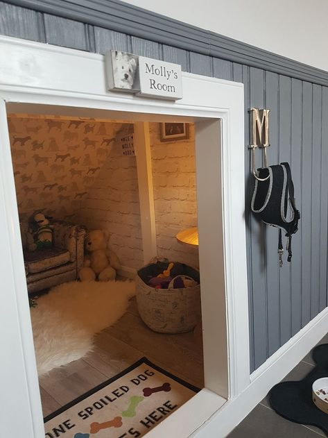Dad Discovers Empty Space Under Stairs & Crafts Genius Doggy Bedroom. 2019 Dad Builds Gorgeous Room For Dog Under Stairs InspireMore The post Dad Discovers Empty Space Under Stairs & Crafts Genius Doggy Bedroom. 2019 appeared first on House ideas. Animal Room, Under Stairs Dog House, Space Under Stairs, Under The Stairs, Stairs For Dogs, Dog Stairs For Bed, Under Stairs Playhouse, House Stairs, Dog Room Decor