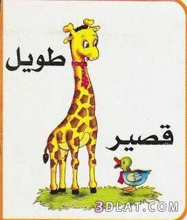 بطاقات تعليمية للاطفال ملونة كروت تعليم الاشياء وعكسها للاطفال2018 Arabic Language Learning Arabic Arabic Kids