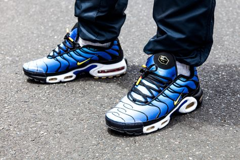 Nike Air Max Plus Hyperblue Tiger : Preview | WAVE®