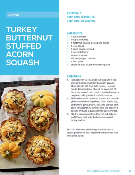 Alchemy 365 Fall Meal Plan #2 - Default Title