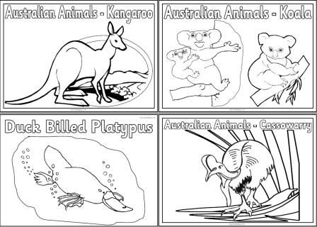 Free Printable Australian Animals Colouring Pages With Images