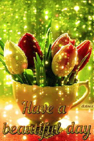Tulip Have a beautiful day Gif morning tulips good morning good morning quotes beautiful day good morning gifs good morning images