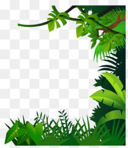 Green Grass Background Border Material Safari Png Fotos De Bebes Fotos