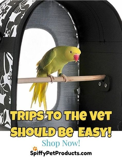 Spiffy Bird Products And Supplies That Ll Make Your Feathered Friends Sing With Joy Spiffy Pet Products Pet Bird Cage Pet Birds Parrot Carrier