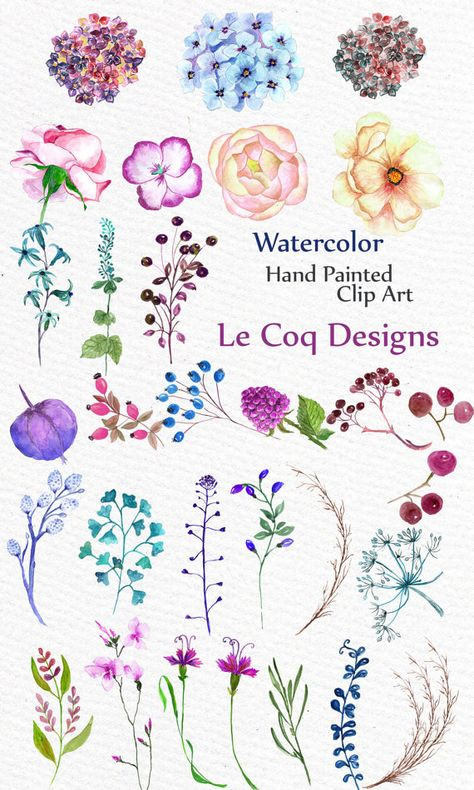 SALE 40% OFF Watercolor hydrangea flowers clipart: от LeCoqDesign
