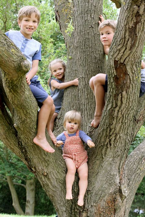 Four kids in a tree! (Emily Ulmer photography)