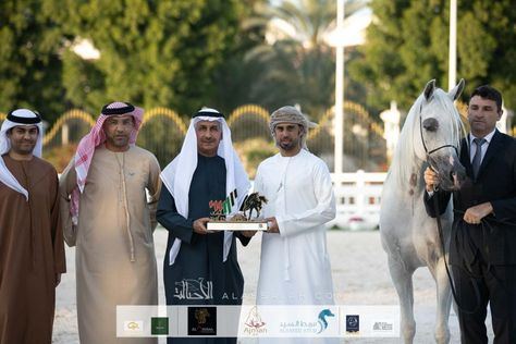 البراقة و فلك و أسياد يحلقون بـ عجمان عاليا في ختام الإمارات الوطنية 2020 Horses Arabian Horse Arabians