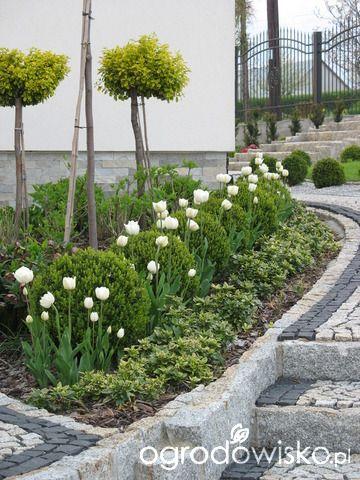 Ogrod Wsrod Pol I Wiatrow Landscaping With Rocks Garden Design White Gardens