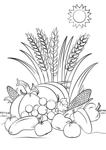Thanksgiving Harvest Coloring Pages Background