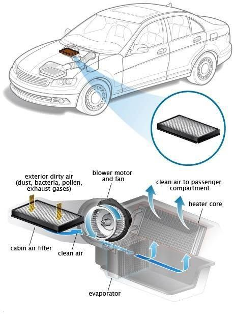 Bad Allergies Stop By Zone Auto Care S And Let Us Take A Look At Your Cabin Air Filter Breathe Clean Fresh Air Car Mechanic Automotive Mechanic Auto Repair