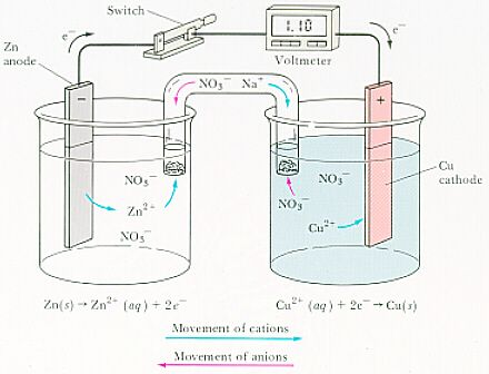 Galvanic Cell Flow Of Anions And Cations Galvanic Cell Teaching Chemistry Cell Diagram