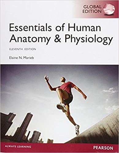 Test bank for Essentials of Human Anatomy and Physiology Global 11th
