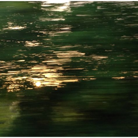 Sun in between the speeding trees...looks like a reflection in the water.