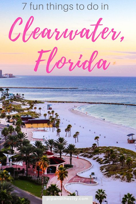 There are so many fun things to do in Clearwater Florida. Read this guide to discover white sand beaches, dolphin tours, sunset spots and great bars. Clearwater Florida, Florida Beaches, Tampa Florida, Best Beach In Florida, Venice Florida, Naples Florida, Florida Travel, Travel Usa, Florida Vacation Spots